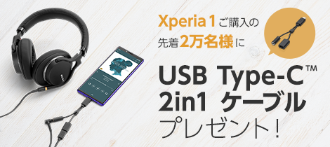 USB Type-C(TM) 2in1 ケーブルプレゼント!